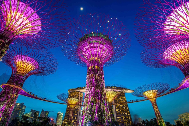 Vi sao goi Singapore la 'dao quoc su tu'? hinh anh 5