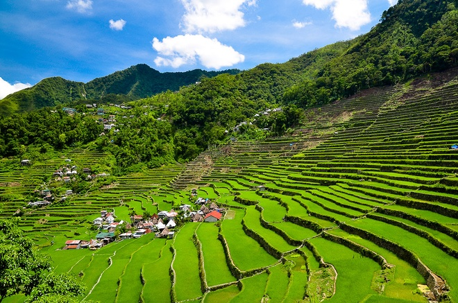 ruong bac thang philippines anh 3
