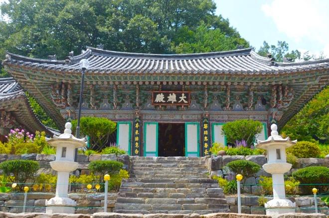 Ly do bong vai la bieu tuong cua que huong HLV Park Hang-seo hinh anh 5 02.jpg
