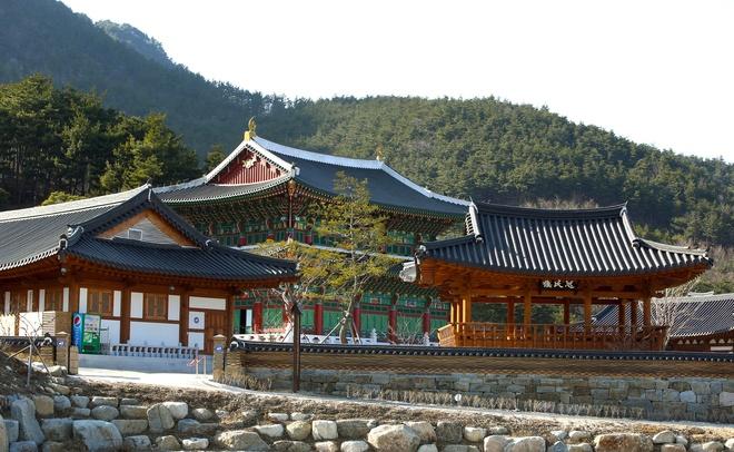 Ly do bong vai la bieu tuong cua que huong HLV Park Hang-seo hinh anh 1 16504700680_8dc0b4df50_k.jpg