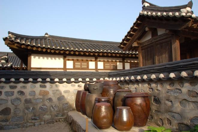 Ly do bong vai la bieu tuong cua que huong HLV Park Hang-seo hinh anh 6 lang.jpg