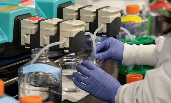 Biohacker bi mat san tim vaccine cho virus corona hinh anh 1 z_bio.jpg
