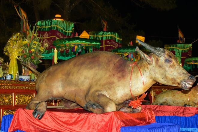 Te dan Nam Giao luc nua dem tai Festival Hue hinh anh 8