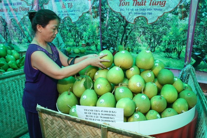 Thanh tra Thuy Bieu - dac san nuc tieng dat co do hinh anh 5