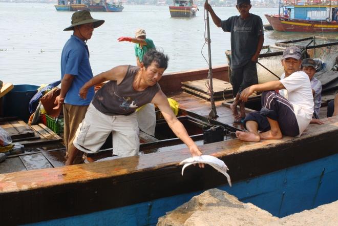Thua Thien - Hue chi tra tien boi thuong cua Formosa cho dan hinh anh