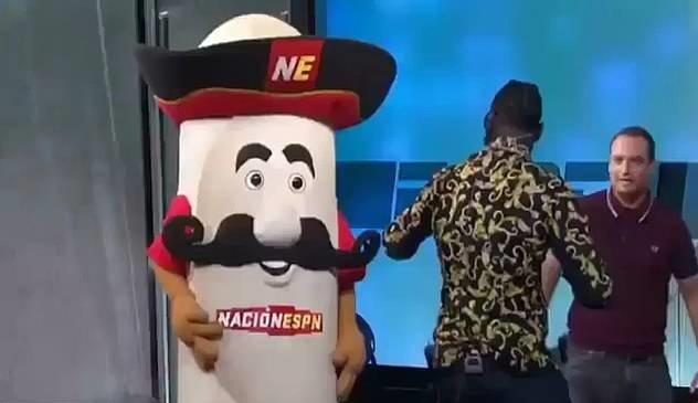 Vo si boxing dam vo quai ham mascot tren truyen hinh hinh anh 1