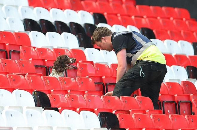 Fan cuong Ronaldo bi dieu tra vi mang sung nhua vao san Old Trafford hinh anh 2