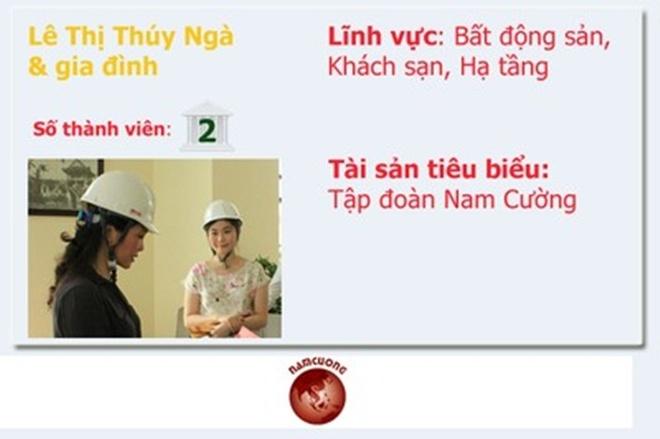 20 gia dinh kinh doanh hang dau Viet Nam so huu nhung gi? hinh anh 11