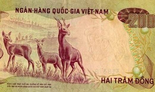 Tien giay Viet Nam qua cac thoi ky lich su hinh anh
