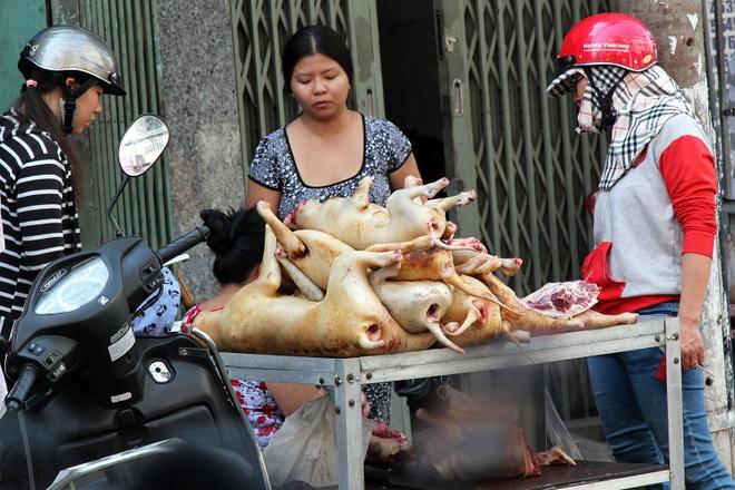 Su bien mat lang le cua cac cho thit cho o Sai Gon hinh anh 1 Một gian hàng thị chó trên đường Phạm Văn Hai (ngã ba Ông Tạ), đắt khách cả ngày.