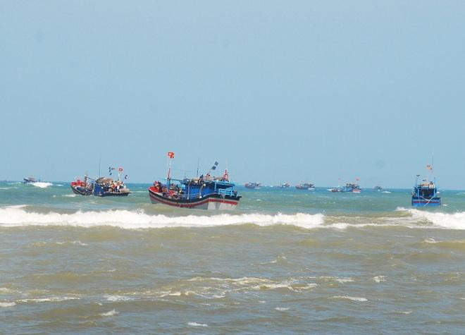 Nhung con ca ngu dai duong nua ta tren bien Phu Yen hinh anh 1 Đội tàu câu cá ngừ đại dương của thành phố Tuy Hòa hùng dũng tiến ra khơi, mở vụ mới.