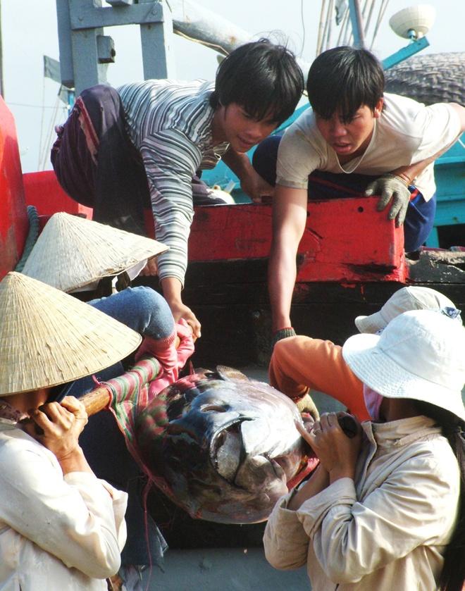 Nhung con ca ngu dai duong nua ta tren bien Phu Yen hinh anh 7 Công việc trên bờ phần lớn do phụ nữ đảm nhiệm.
