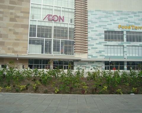 Dieu it biet ve tap doan rot 200 trieu USD vao Ha Noi hinh anh 1 AEON là tập đoàn bán lẻ lớn nhất Nhật Bản.