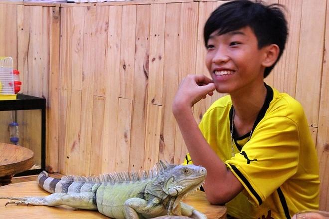 """Quan ca phe rang xay voi bo sat doc dao nhat Sai Gon hinh anh 3 Một bạn trẻ thích thú vui đùa với một chú bò sát cho biết: """"thật thú vị khi tậnmắt nhìn và vuốt ve  những con bò sát mà bình thường thấy chỉ xuất hiện trên tivi,hoặc internet vì hiếm có ở Việt Nam""""."""
