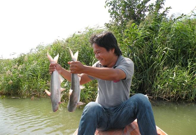 Thu tien ty moi nam nho nuoi ca bong lau trong ao hinh anh 1 Anh Đăng bên ao nuôi cá bông lau.