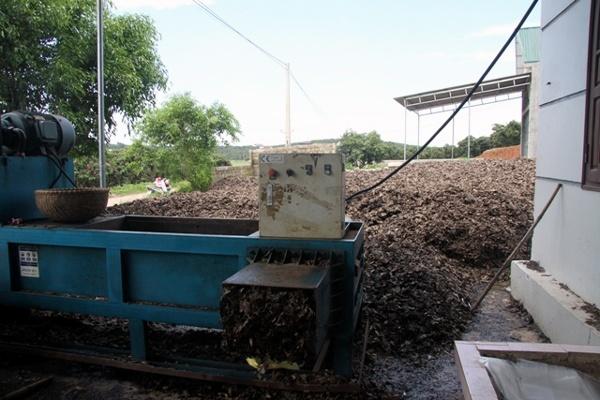 Bi an nguoi dau co tram tan la vai cho nuoc ngoai hinh anh 3 Máy ép lá vải thành các bánh để đóng gói.