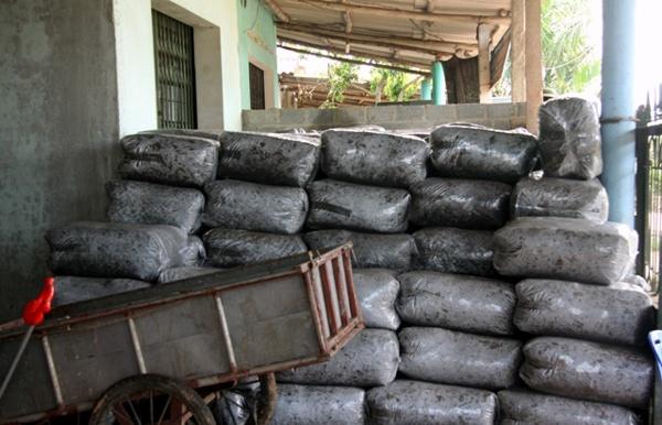 Bi an nguoi dau co tram tan la vai cho nuoc ngoai hinh anh 5 Lá vải sau khi ủ được đóng vào các túi ni-lon chuẩn bị đem đi xuất khẩu.