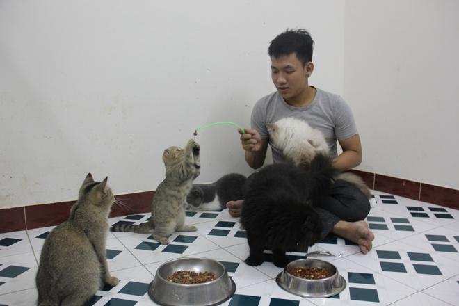 Co ngoi meo Tay nua ty dong cua cau sinh vien 21 tuoi hinh anh 13 13.Do số lượng mèo lớn nên Trung phải chia lịch tắm và có thời gian chăm sóc các em mèo.
