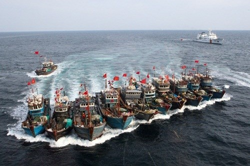 Hai Duong-981: Tham hoa trong ngoai giao Trung Quoc hinh anh 2 Tàu cá Trung Quốc tiến ra Biển Đông vơ vét nguồn cá.