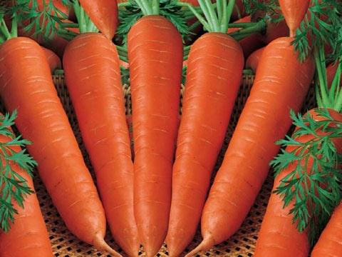 Nhung cach ket hop thuc pham sai lam gay hai cho co the hinh anh 10  Các nghiên cứu chỉ ra rằng nếu carotene có trong cà rốt kết hợp với rượu sẽ tạo ra những độc tố trong gan, ảnh hưởng xấu đến sức khỏe.