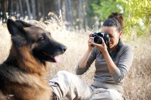 Nhung y tuong kinh doanh hay tu cun cung hinh anh 2 Chụp ảnh cho thú cưng là công việc dành cho những người am hiểu về nhiếp ảnh. Ảnh minh họa.