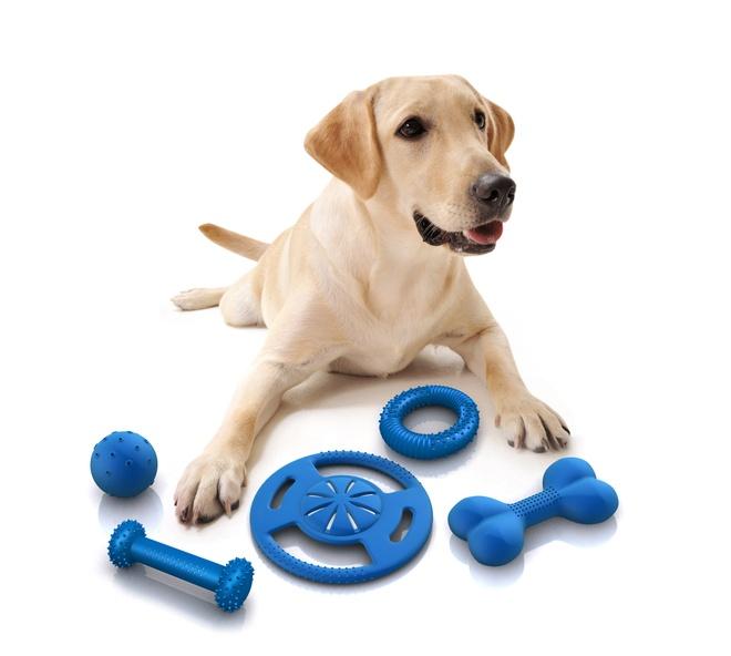 Nhung y tuong kinh doanh hay tu cun cung hinh anh 5 Bí quyết kinh doanh đồ chơi cho thú cưng là chất lượng đảm bảo và luôn bắt kịp xu hướng. Ảnh minh họa.