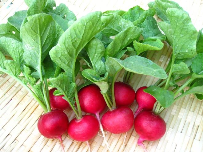 10 thuc pham la 'khac tinh' cua benh tri hinh anh 7  Lượng chất xơ giàu có trong củ cải giúp cho các chất thải tống ra khỏi ruột dễ dàng hơn.