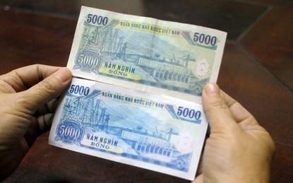 Tien gia menh gia 5.000 dong len loi vao cho hinh anh