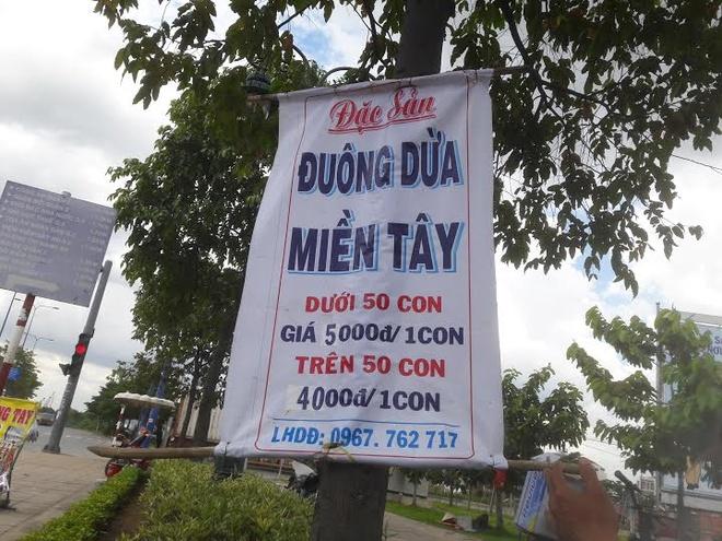 Duong dua mien Tay 5.000 dong mot con ban o le duong Sai Gon hinh anh 1