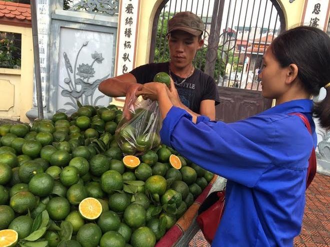 Cam Trung Quoc gia 20.000 dong mot kg ban tran Ha Noi hinh anh 2
