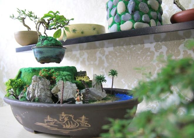 Bonsai tien trieu bay lo lung hut khach Sai Gon hinh anh 1
