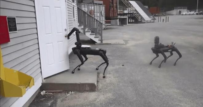 Cho robot tham gia pha bom hinh anh