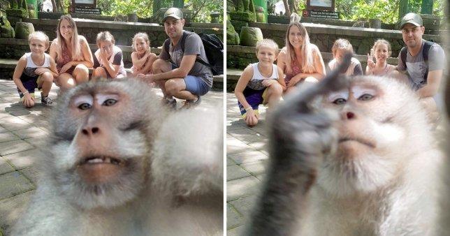 Buc anh khi 'selfie' cung du khach o Bali gay an tuong manh hinh anh 1