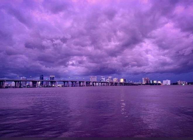 Bau troi Florida chuyen thanh mau tim anh 2