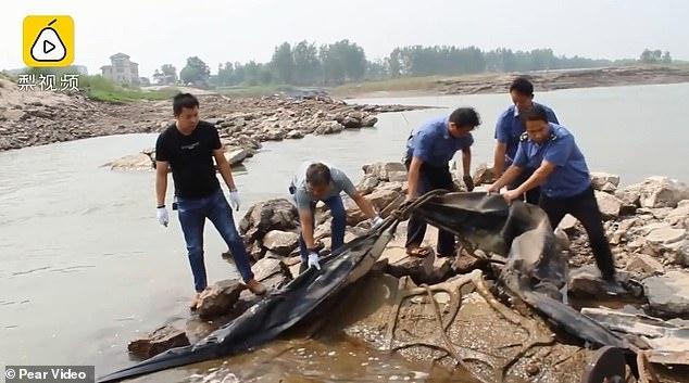 'Quai vat ho Loch Ness' cua Trung Quoc la tui khi cao su rach hinh anh 1