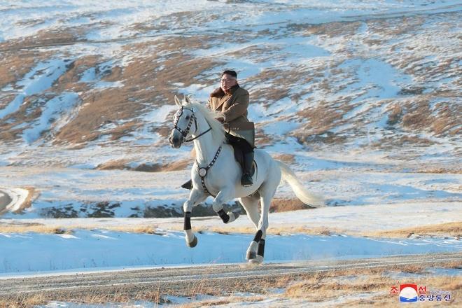 Triều Tiên chi hơn 75.000 USD mua ngựa thuần chủng từ Nga