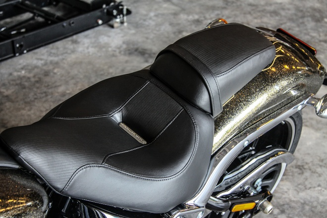 Harley-Davidson Breakout son thu cong gia 1,3 ty ve Viet Nam hinh anh 7