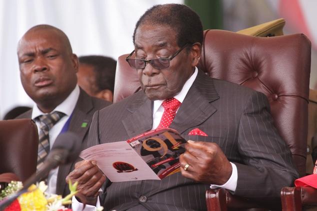 Sinh nhat trieu USD cua tong thong Zimbabwe hinh anh 3