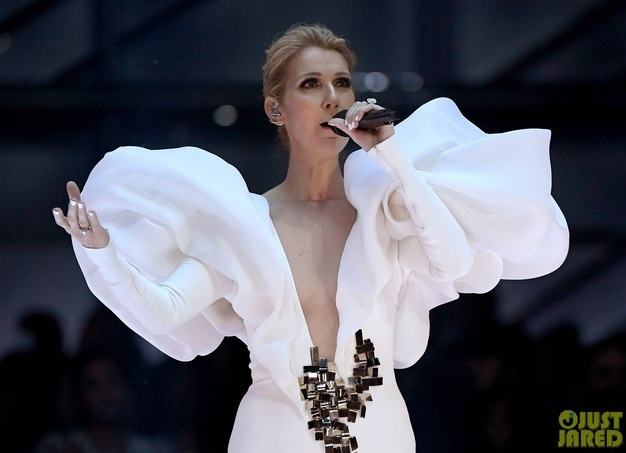 Celine Dion hat 'My Heart Will Go On' tai Billboard Music Awards 2017 hinh anh