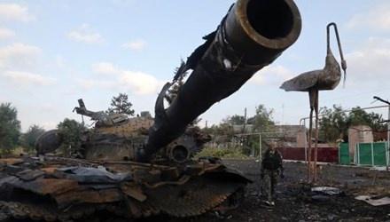 Tinh hinh 'cang nhu day dan', Ukraina muon gia nhap NATO hinh anh 1 a