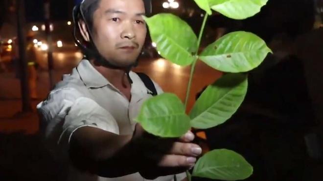 Hanh dong 'ky quac' cua cac tai xe tai chot kiem tra nong do con hinh anh