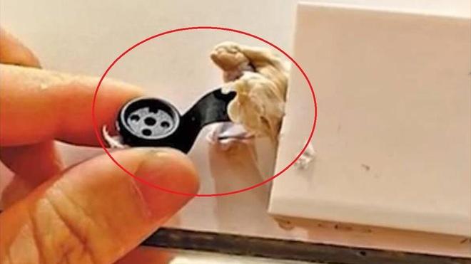 Phat hien camera quay len trong phong thay do o Trung Quoc hinh anh