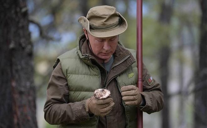 TT Putin leo nui hai nam mung sinh nhat tuoi 67 hinh anh