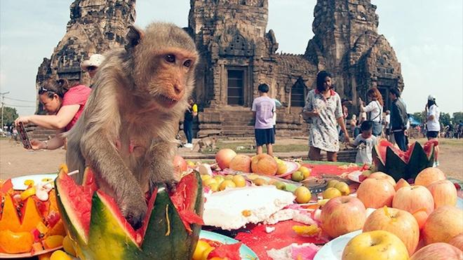 Nguoi Thai Lan bay 'tiec bufftet' trai cay cho bay khi hoang hinh anh