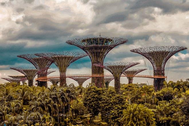 Kinh nghiem 3 ngay phieu bat khap dat Singapore hinh anh