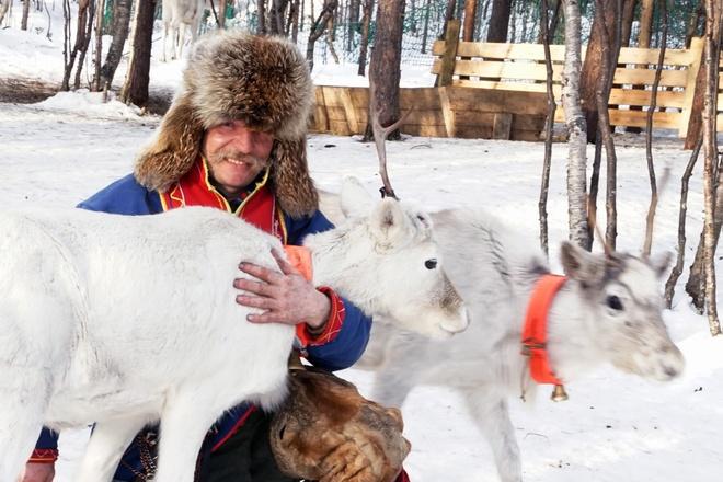 Ghe Murmansk lanh gia, nho nuoc Nga nhung nam 90 than thuoc hinh anh