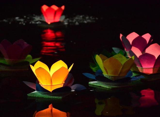 Hang nghin ngon hoa dang lung linh tren song Sai Gon hinh anh