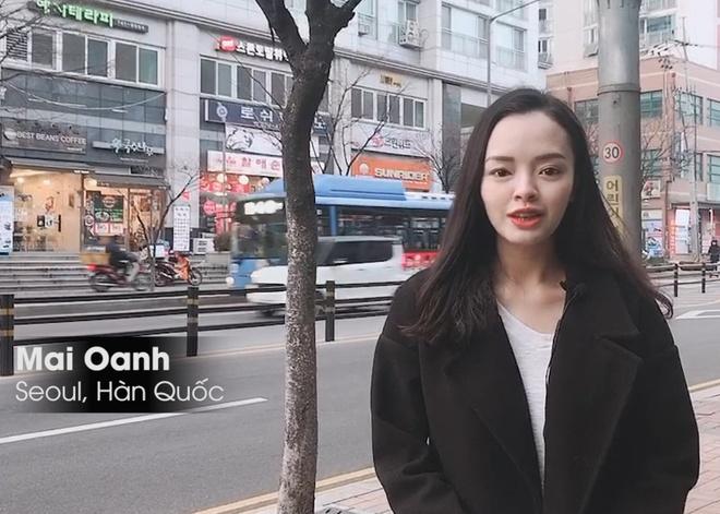 CDV Han Quoc o Seoul tin HLV Park se giup Viet Nam dang quang hinh anh