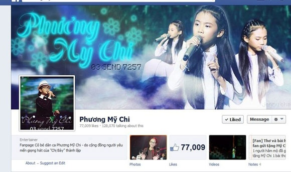 Sot voi ban 'ly lich trich loan' cua Phuong My Chi hinh anh 1