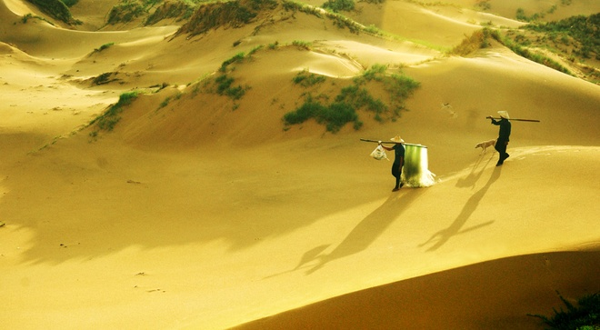 Canh sac Phu Yen trong 'Toi thay hoa vang tren co xanh' hinh anh